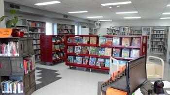 Bibliothèque Fleur des champs, Paroisse Plessisville