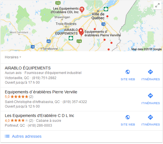 Google my business - exemple